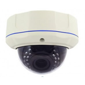 Dome Full HD Mega Pixel(1080P) HD-SDI Vandalproof camera
