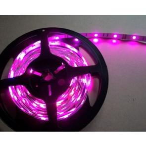 Pink LED strip flexible waterproof