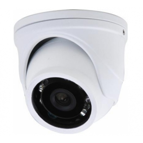 VANDALl-PROOF SECURITY CAMERA