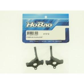 HoBao volanski mehanizem